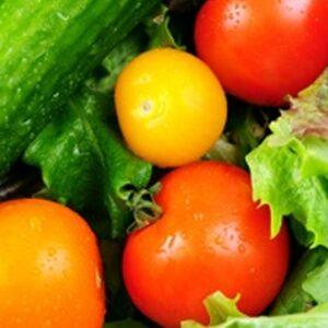 Vår miljö för en hållbarare framtid - återbruk inom daglig verksamhet